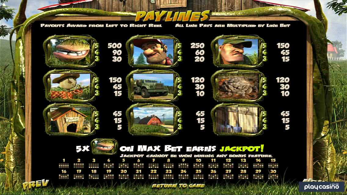 Paylines & Payouts