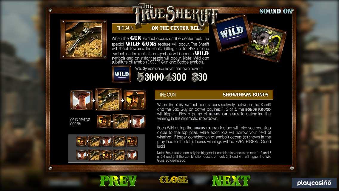 Wild Guns & Showdown Bonus Features