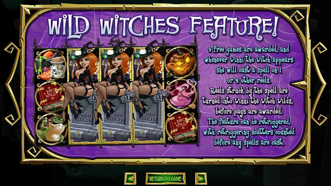 Wild Witches Feature