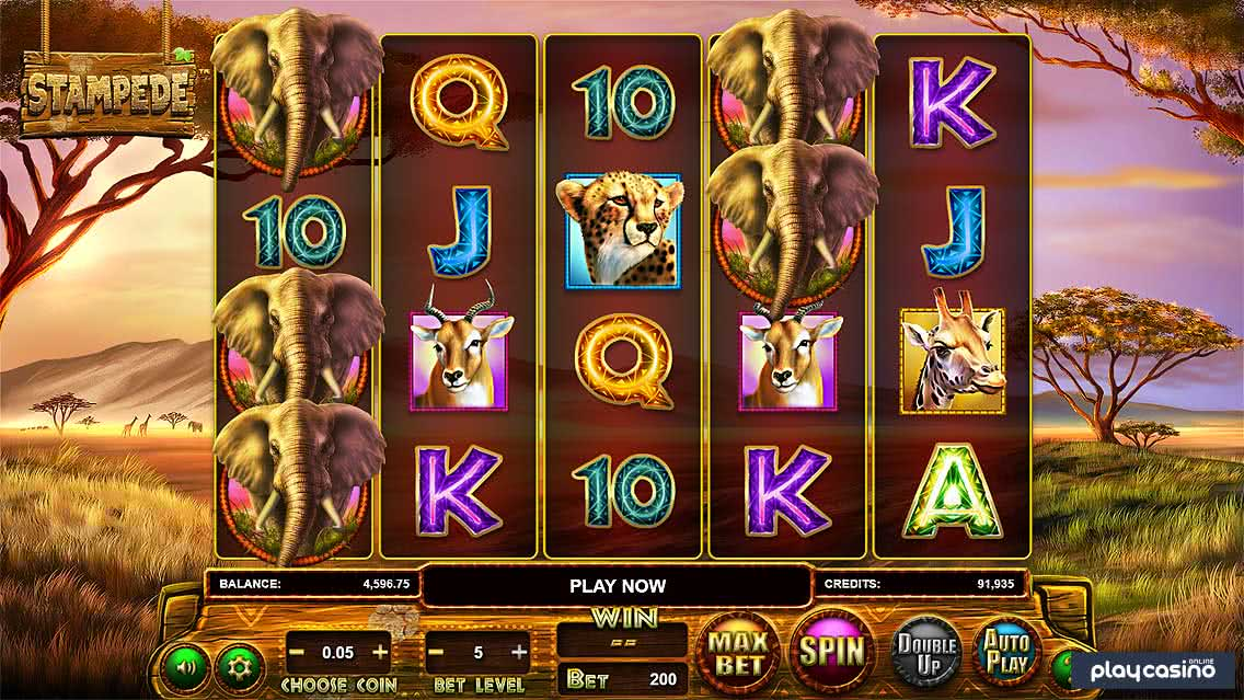 Screenshot of the Stampede Slot