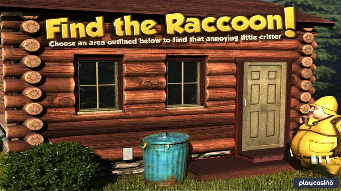 Raccoon Hiding Bonus Round